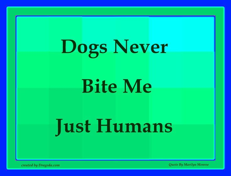 Dogs Never Bite Me, Just Humans - by Marilyn Monroe: Wall Quotes, Famous People Quotes, Favorite Quotes