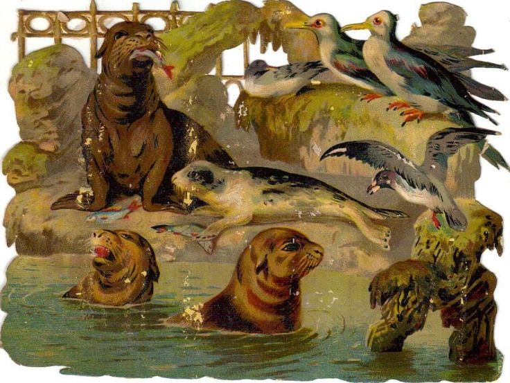 Larger Victorian Die Cut Scrap Seals at the Zoo c1880s