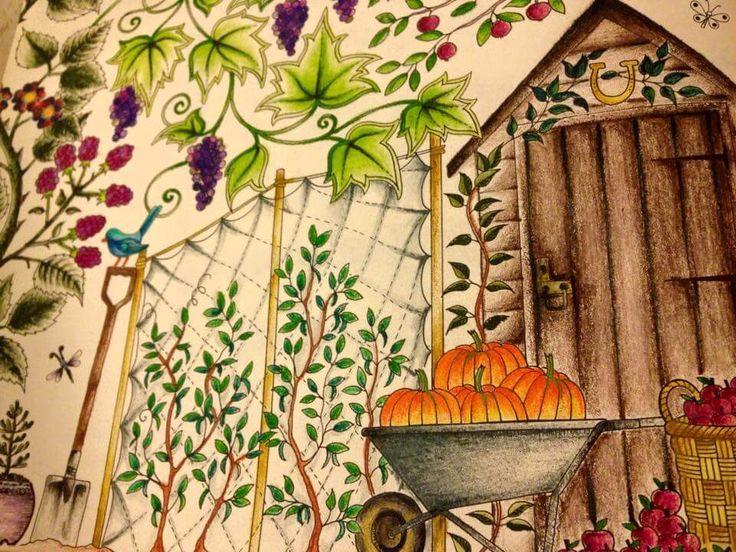 Secret Garden Folha Dupla Abobora Johanna Basford