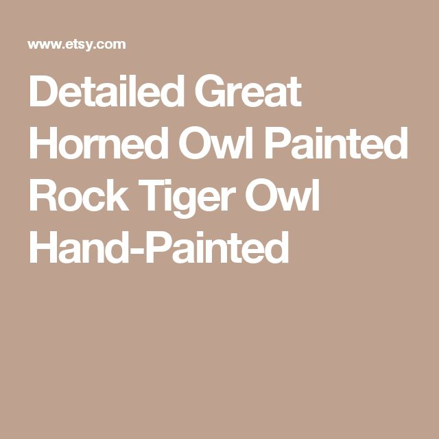 Detailed Great Horned Owl Painted Rock Tiger Owl Hand-Painted