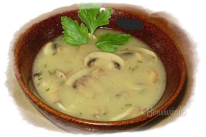 Šampiňónová polievka • recept • bonvivani.sk