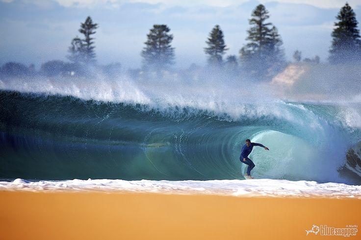 Hollow SydneyBlue Paradis, El Surf, Blue Room, Les Ocean, Sydney Photos, Hollow Sydney, Beautiful Waves, Perfect Surf, Beautiful Pictures