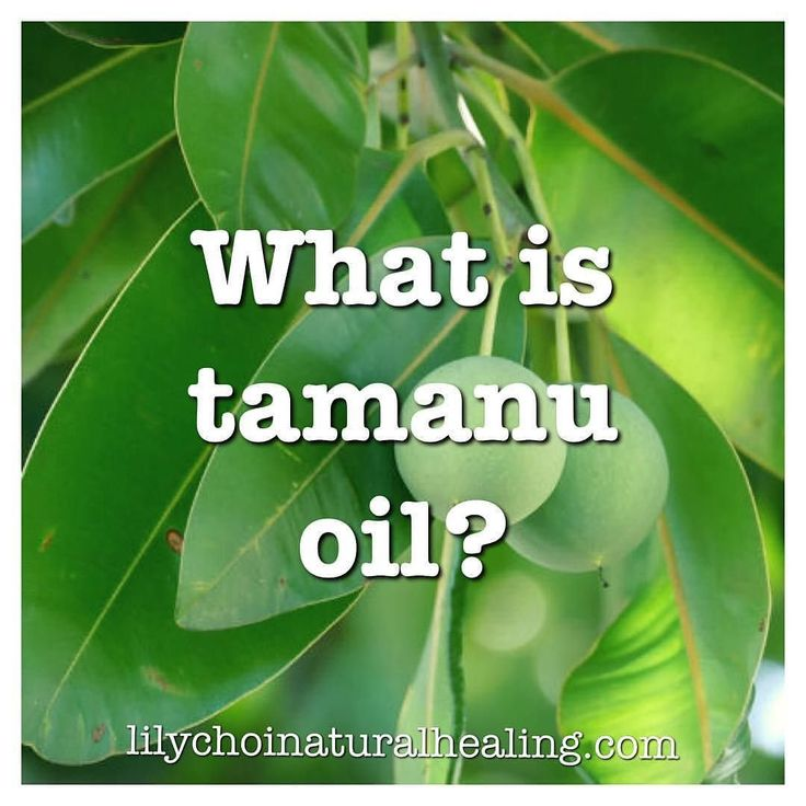 @Regrann from @lilychoinaturalhealing: There is a specific oil that is derived from a nut grown in the South Pacific that has been used for centuries to clear up virtually any skin condition. Its a secret that has been forgotten but the benefits of tamanu oil are now being brought into mainstream beauty. . . Tamanu (pronounced TAW-man-oo) oil  derived from the large blonde nuts of the Ati tree  has been used by natives of South East Asia and the Pacific Islands for centuries as a cure-all…