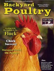 Beau Backyard Poultry Magazine