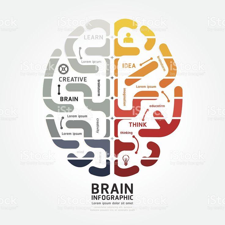 Схема мозга и инфографика векторный дизайн линии монохромный цвета Сток Вектор Стоковая фотография