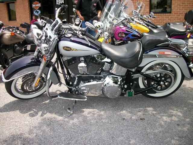2009 Harley-Davidson FLSTN Softail® Deluxe - How stylish! Very unique look. Frederick HD