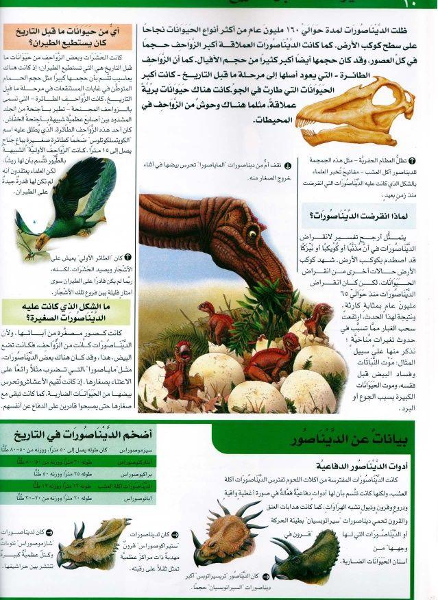 موسوعة سؤال وجواب عالم الطبيعة Vegetables Places To Visit