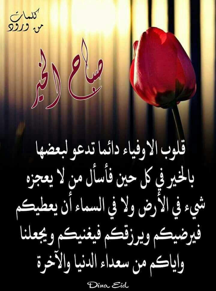 Pin By Fleure Des Champs On صباح الخير و مساء الخير Bonsoir Good Afternon Bonjour Good Morning Calligraphy Arabic Calligraphy