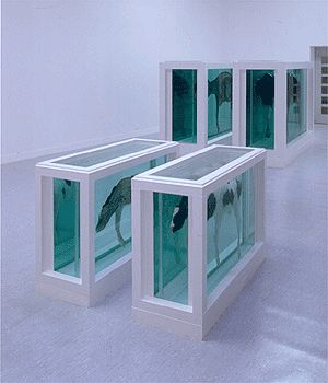 """""""Mother and Child Divided"""" - 1993, Damien Hirst. The thick white frames are a signature structure of Hirst's artwork."""