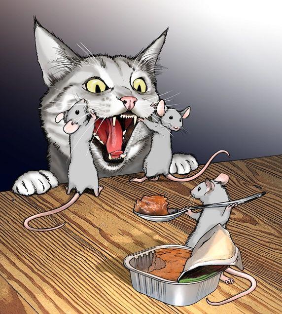 гортензии, картинки кошек карикатуры отметить, что