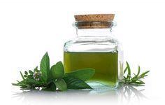 Cómo hacer aceite de hierbabuena. ¿Quieres aprender a hacer aceite de hierbabuena? Pues te recomendamos que sigas leyendo porque cada vez es más importante cuidarse de forma natural. El aceite de hierbabuena tiene muchos usos pero sob...