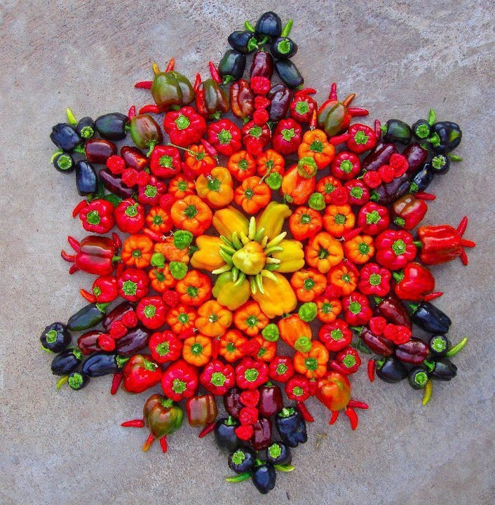 Frutas decorativas.: Food Festivals, Flowers Mandala, Belle Peppers, Vibrant Colors, Edible Art, Vegetable, Veggie, Food Art, Foodart