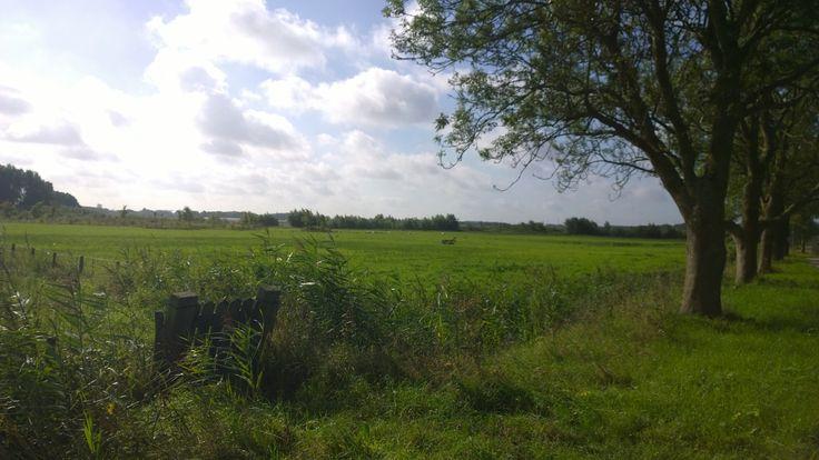 fotovrijdaghia #35 polderlandschap Hendrik-Ido-Ambacht Holland