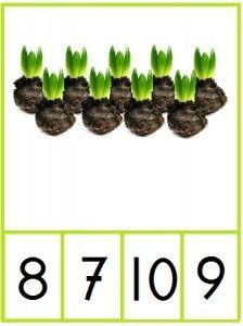 Knijpkaarten cijfers 1 t/m 10 met bloembollen.  Tel de bloembollen en maak de knijper vast aan het juiste cijfer - jufanja.eu