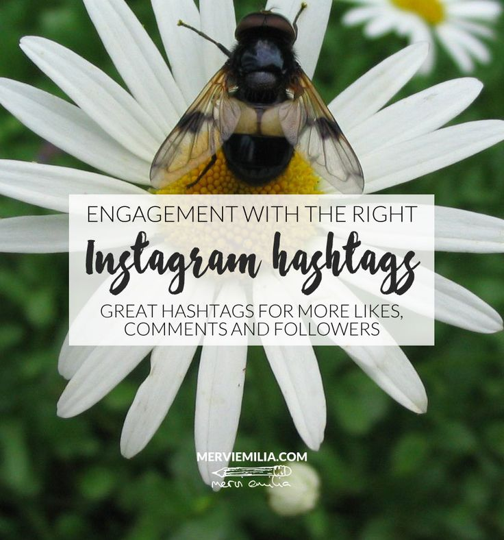 Looking for new hashtags to improve your Instagram visibility and engagement? Look no further. Here's a list of 50+ great hashtags for more likes, comments and followers.