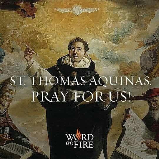 St. Thomas Aquinas, pray for us!