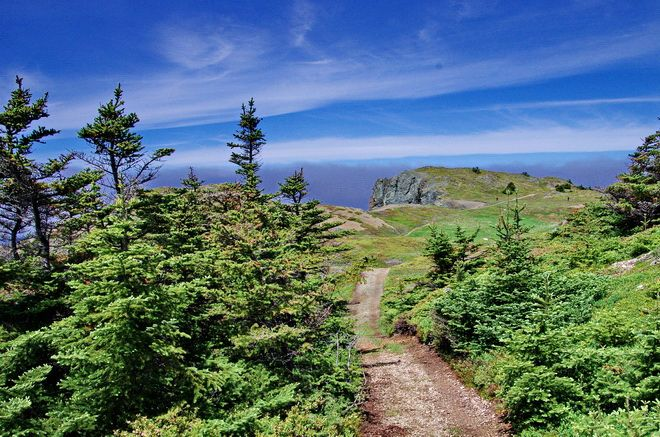 All the trails near Long Point Lighthouse are spectacular - Twillingate, Newfoundland