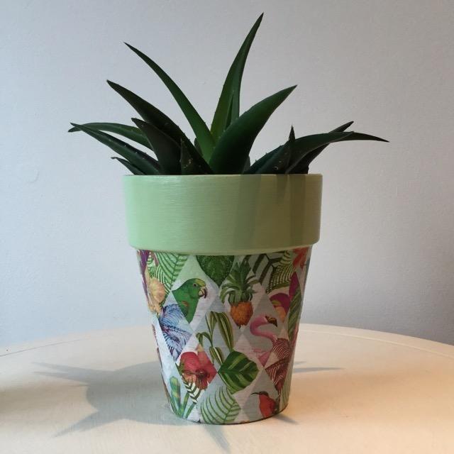 *NEW* Tropical Jungle Pineapple Flamingo Terracotta Plant Pot Tall 17cm