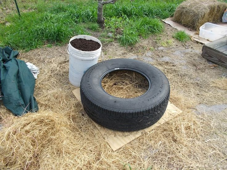17 best images about tire gardens on pinterest gardens