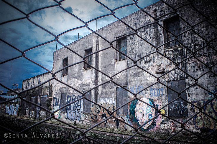 Vivienda con Entraña, Buenos Aires Fotografía: Ginna Álvarez