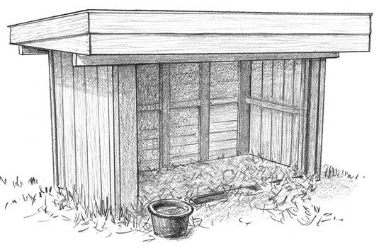 Old roofing material and pallets can become a sleeping shelter for goats.