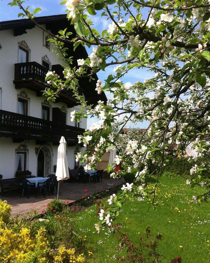 Im Frühling ist der Urlaub in Bad Feilnbach im Chiemsee Alpenland besonders schön: Die ganze Region und v.a. unser Obstgarten erstrahlen in einem farbenfrohen Blütenmeer. Hier sehen Sie die Blüten der Apfelbäume, die unsere Gäste immer wieder ins Staunen versetzen. Auf den Liegestühlen unter den Obstbäumen lässt sich gut entspannen... http://www.pension-riedlhof.de/wellness-bauernhof/sonnenwiese-terrasse