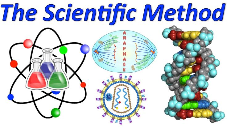 Use the Scientific Method! (Mr. W's Music Video)