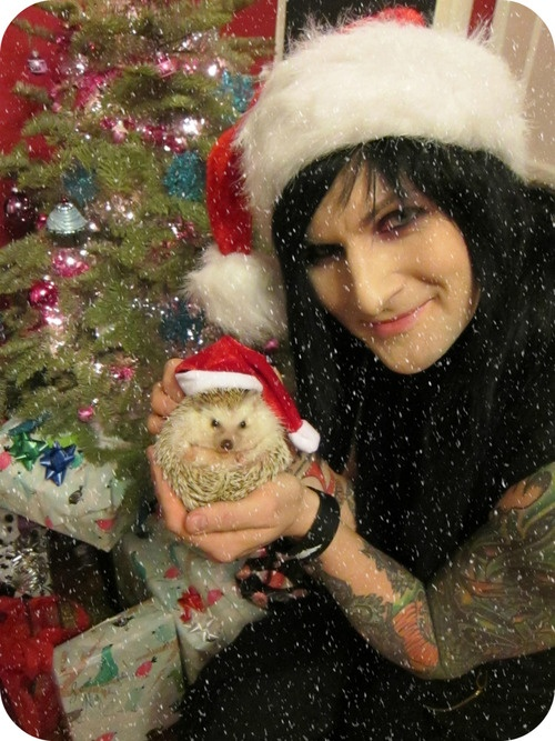 Here we see one of the most adorable living things to walk the earth. And a hedgehog.
