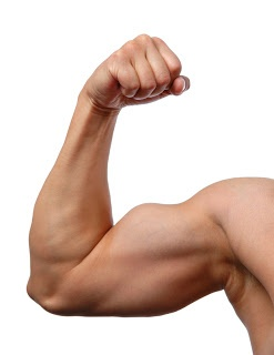 ATTENTION MEN: Discover what foods and habits will raise your testosterone levels!   #testosterone #anabolicfoods #musclemass #weightliftings #menshealth