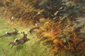 Rien Poortvliet Museum - Schilderijen Hazen       lb xxx.
