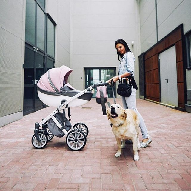 Con una giornata così non si può certo restare chiusi in casa! Il trio @anex_baby è già pronto per la passeggiata :) #stroller #anex #anexbaby #pink #casadelbambino #babyshop #babydesign #mom #mommy #mother #family #mommylife #babystyle #bestoftheday #follow #instadaily #photooftheday #picoftheday #adorable #babies #baby #beautiful #cute # #infant #instababy #instagood #kid #kids  Scopri di più su ☞ www.casadelbambino.com