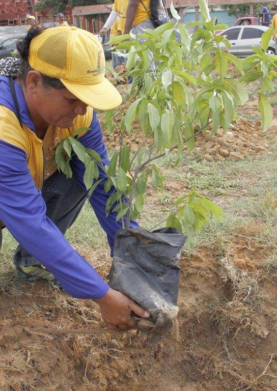 Son 17 años ...cultivando la esperanza a través de la siembra de árboles #PorUnamejorCiudad