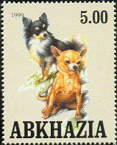 Chihuahua stamp from Abkhazia