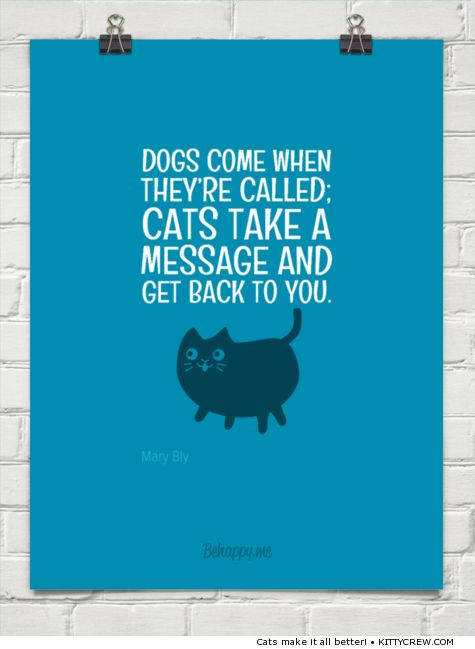 Quote about cats: What cats do when called (more @ Kittycrew.com)