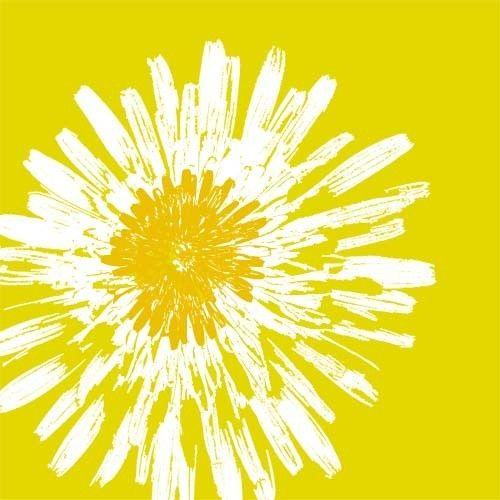 dandelion flower fine art print summer dandelion by ialbert