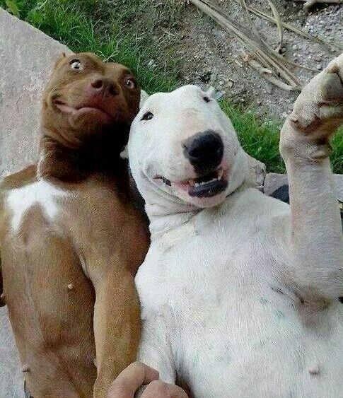 """When you and your bestie see's your ex boyfriend 's girlfriend """"is that her? """""""