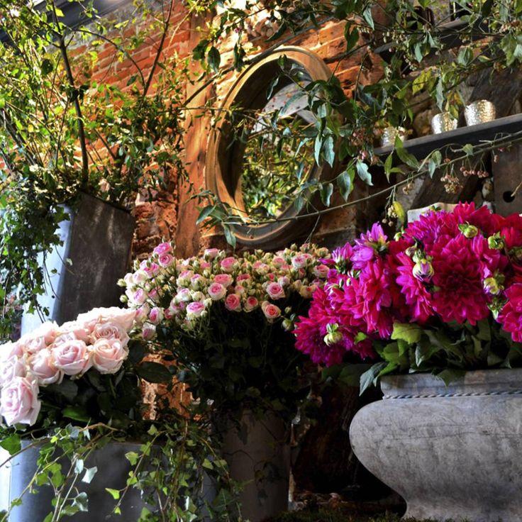 Bien-aimé 13 best Eric Chauvin images on Pinterest | Flowers, The flowers  NQ39