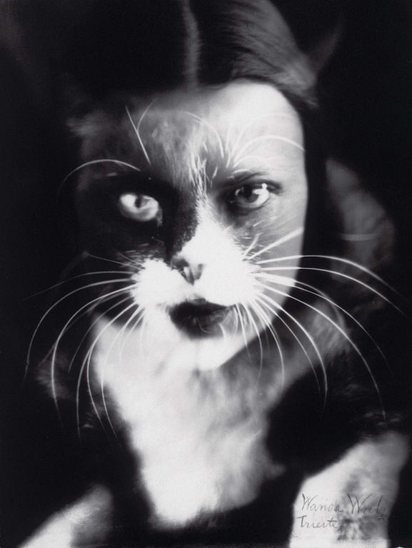 Io + gatto (Cat + I) by Wanda Wulz, 1932. See the Exposure column at Design Observer. http://designobserver.com/feature/exposure-cat-and-i-by-wanda-wulz/38801/