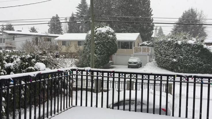 Second Snowstorm in Metro Vancouver, BC - YouTube