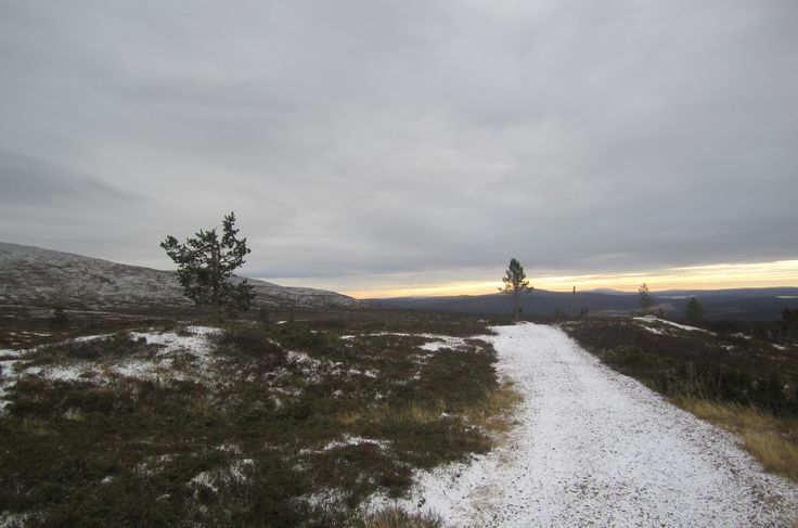 Pallas, Lapland