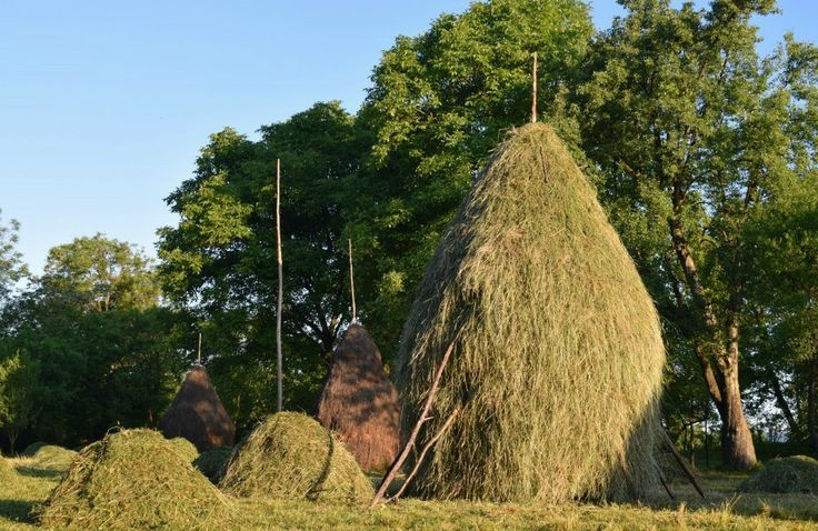 Haystacks of Maramures