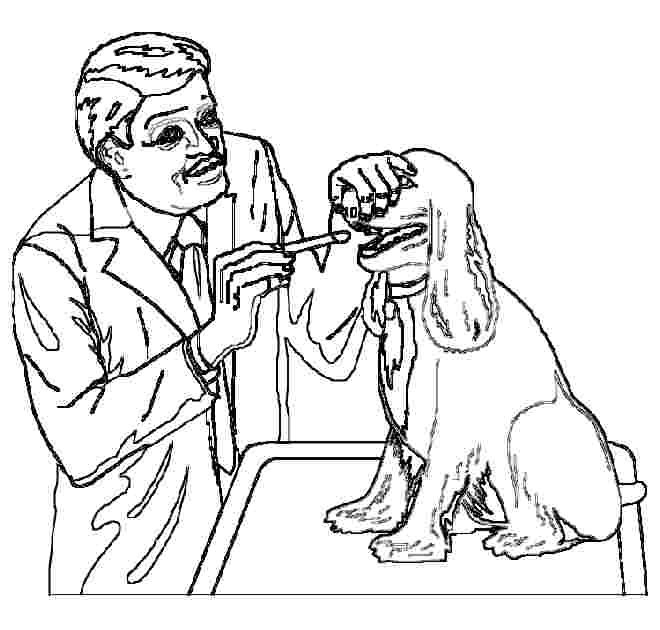 vet tools coloring pages - photo#6