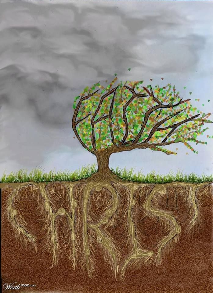 Rooted and built up in him, and stablished in the faith, as ye have been taught, abounding therein with thanksgiving. ~ Colossians 2:7