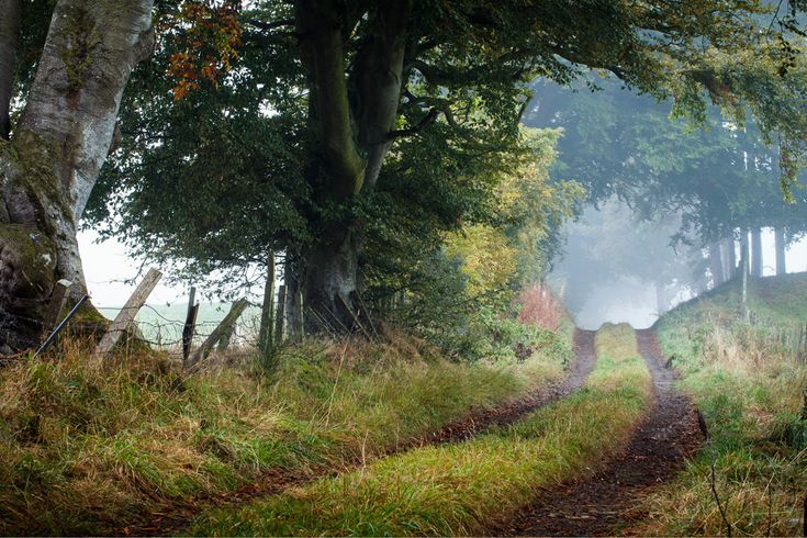 The path to follow | A misty Friday morning in Lanark, Scotland