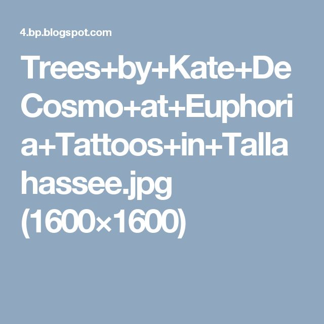 Trees+by+Kate+DeCosmo+at+Euphoria+Tattoos+in+Tallahassee.jpg (1600×1600)