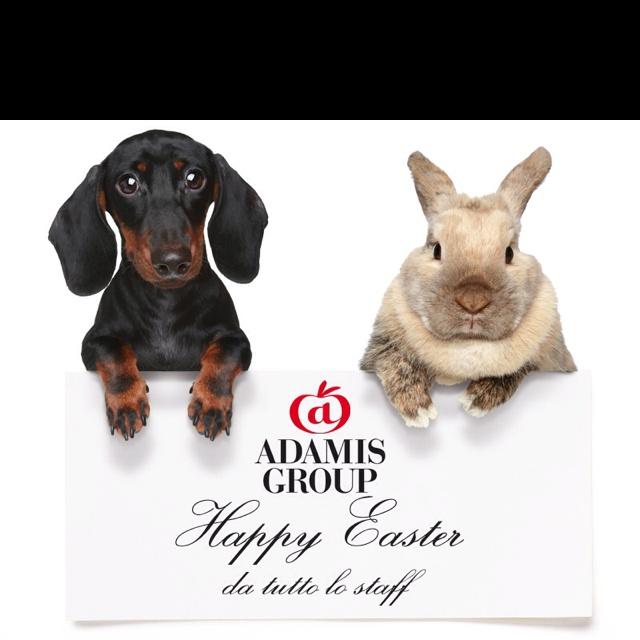 Happy Easter from Adamis Team! www.adamis.it