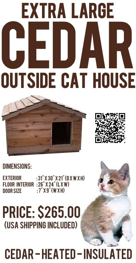 how to keep your cat at your house bdo