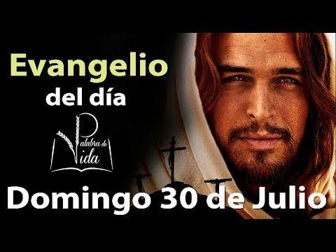 Armonia Espiritual: EVANGELIO DEL DÍA Domingo 30 de Julio 2017 l Palab...