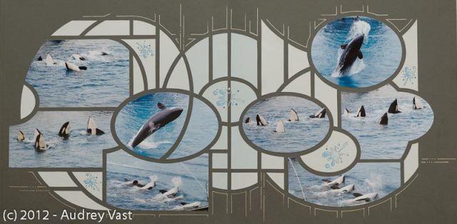 Les ateliers SCRAPBOOKING d'Audrey - animatrice Azza - Les orques du Marineland d'Antibes 1/3