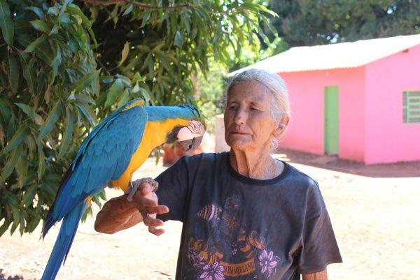 Dona Laura ajuda as pessoas há 70 anos: uma voz guia a benzedeira